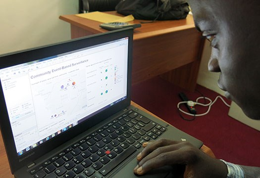 Red Cross volunteer monitoring computerscreen with data about ebola outbreak